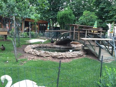 Merkur animal garden Budva