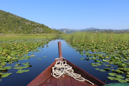 Boat on Skadar Lake