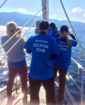 Dolphin watching tours in Montenegro are accompanied by experts from Montenegro Dolphin Project.